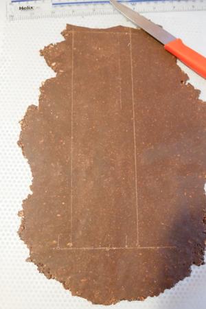 buche de noel framboise et chocolat