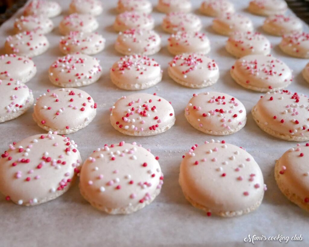 macarons inratables